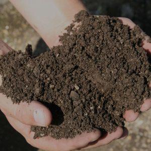 Phân trùn quế hữu cơ