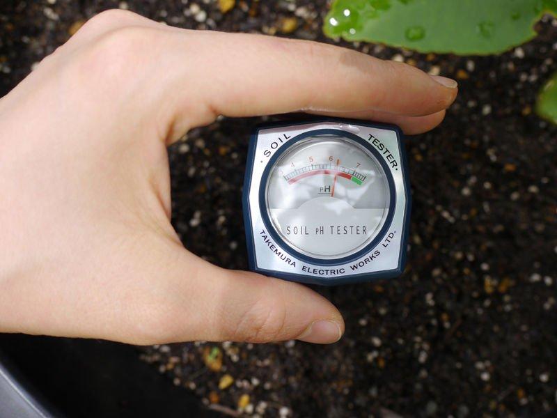 Thường xuyên đo độ pH đất trồng