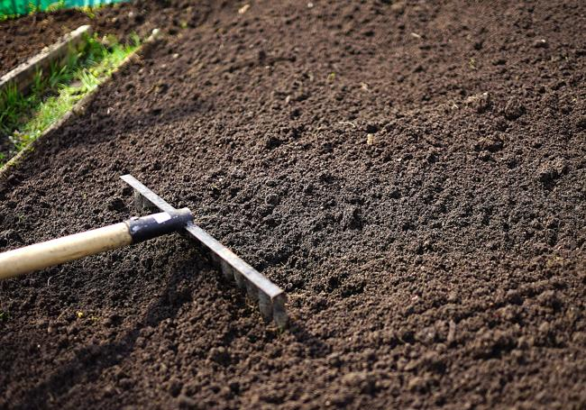 Công dụng của than bùn được ứng dụng rộng rãi